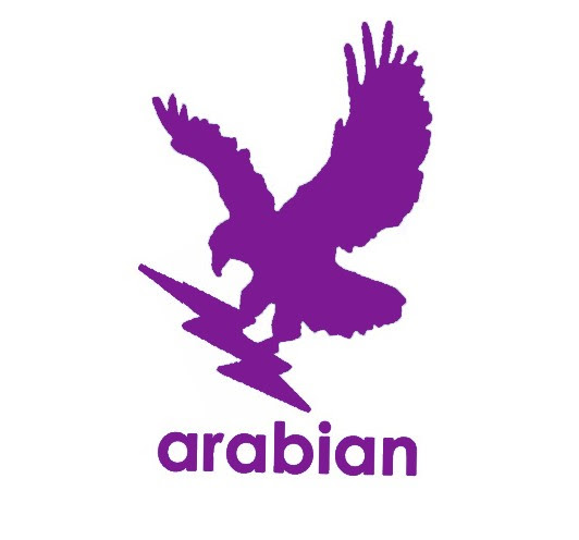 Arabian International Industries LLC Logo